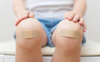 Фазы грануляции раны