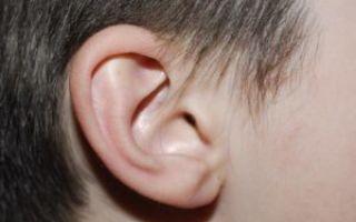 Возможен ли перелом уха?