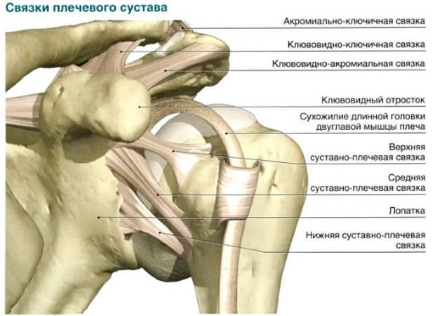 Растяжение связок плечевого сустава : как лечить?